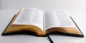 biblia2